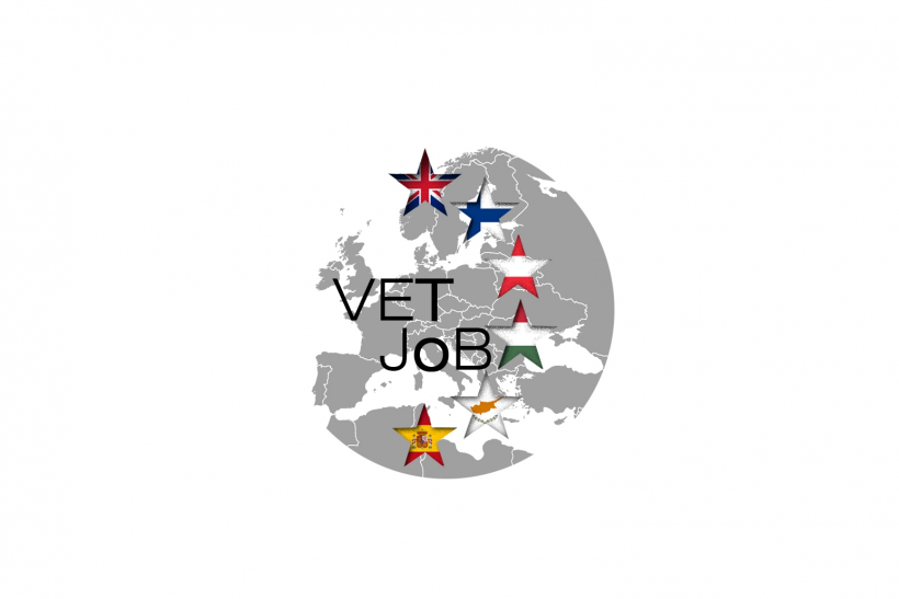 Vet to job
